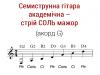 Семиструнна гітара або кобза – академічна