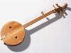 Банджо з дерев'яним верхняком