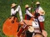 Оркестрові кобзи